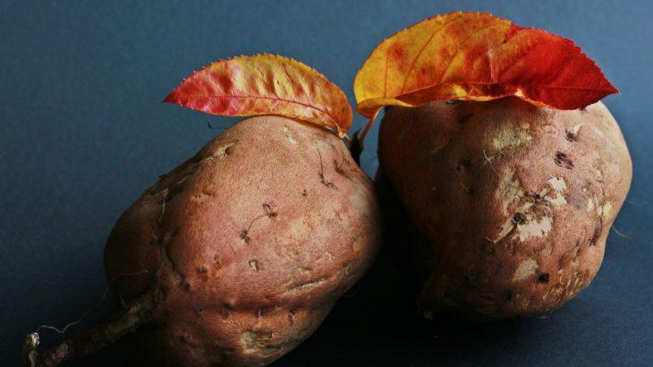 沖縄・久米島の紅芋の可能性とは?お土産商品開発しませんか?