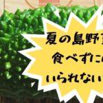 沖縄・久米島で手に入る、夏の島野菜と買えるお店を紹介するよ!